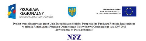 NFZ_UE_NSS_.png